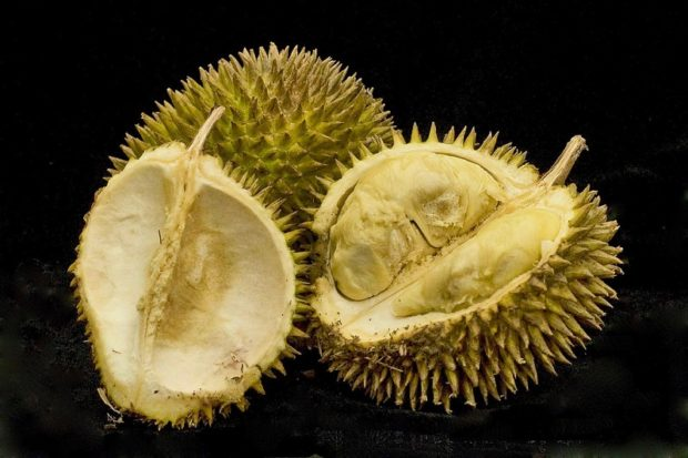 An image of a durian fruit cut in half. It's the world's worst smelling fruit.