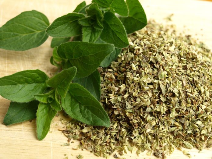Dried herbs like those pictured here can save you a fortune compared to buying fresh ones.