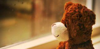 teddy bear fad diet