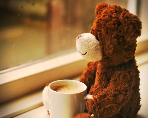 A teddy bear with a coffee. Even bears know that coffee isn't going to make you gain weight.