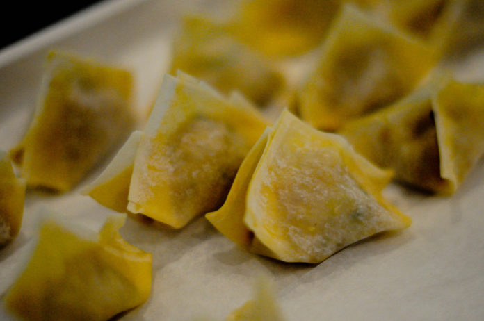 Cooking With Sros Hot Dogs Inside Wonton Wrappers 2
