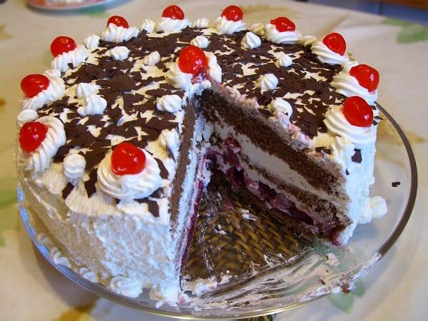 a chocolate flecked cake