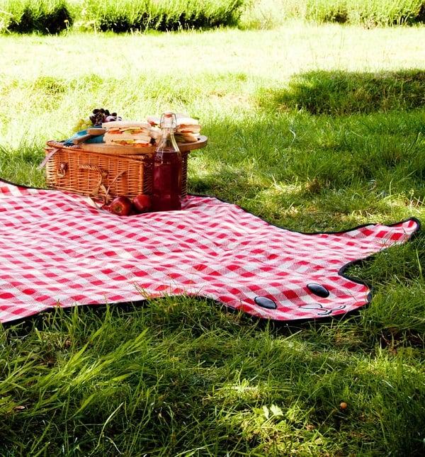 Picnic Blanket Giveaway 3