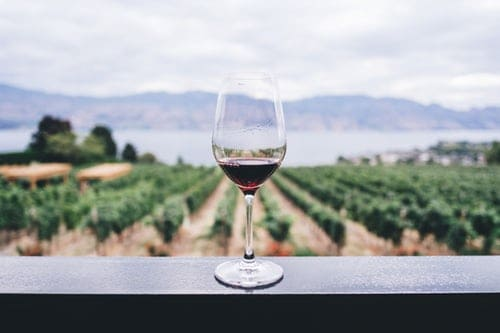 Cline Cellars Winery  | Ancient Vines & Family Roots