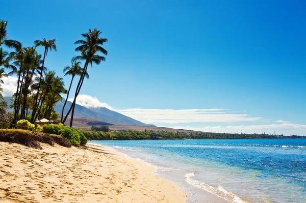 Love a trip to hawaii