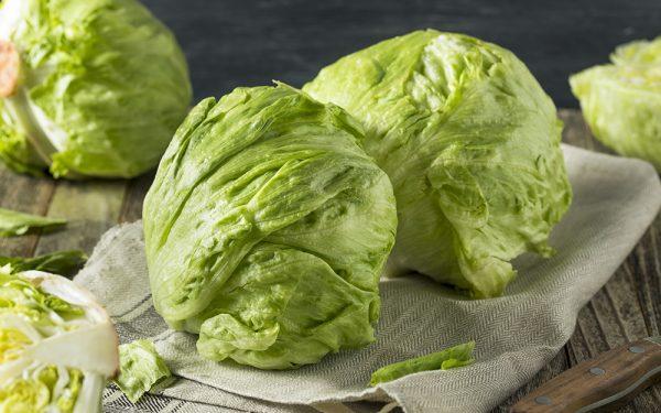 iceberg lettuce heads