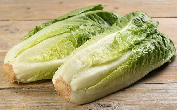 Romain lettuce heads