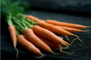 vegetable kingdom cookbook review